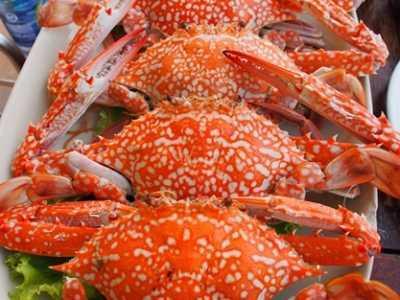 7大吃海鲜禁忌得知晓 海鲜过敏