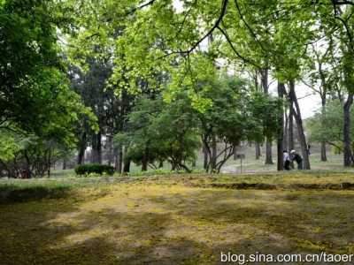 横垣北京城的大土堆- 元大都城垣遗址