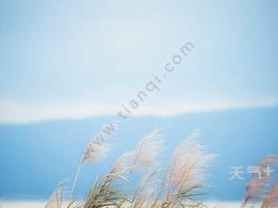 关于风的古诗有哪些 描写风有多大